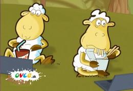 Ovce - pohadka