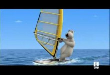 Medved Bernard: Windsurfing
