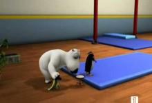 Medved Bernard: Gymnastika