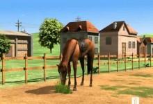 Medved Bernard: Jizda na koni
