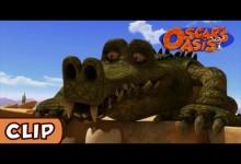 Oskarova oaza: Krokodyl