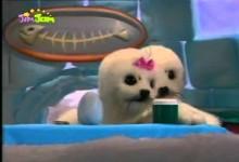 Tuleni z iglu: Vajicko