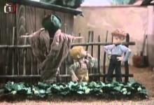 Jaja a Paja: Jak pestovali jahody