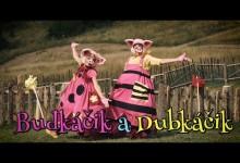 Smejko a Tanculienka: Budkacik a Dubkacik