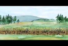 Dejiny ceskeho naroda: Selske bouce