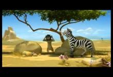 Leon: Zebra