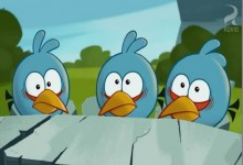Angry Birds: Cordon blee!
