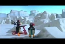 Pingu: Novy skutr